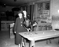 1940 Pacific Coast Turkey Show Scenes-1
