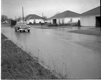 1949-2 Evans Street (High Water) 1.jpeg