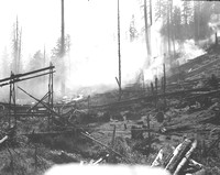 1936-Forest Fire; Fall-4