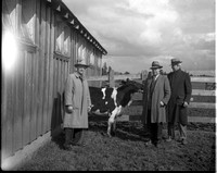 1950-1 Heifers for Relief 4.jpeg